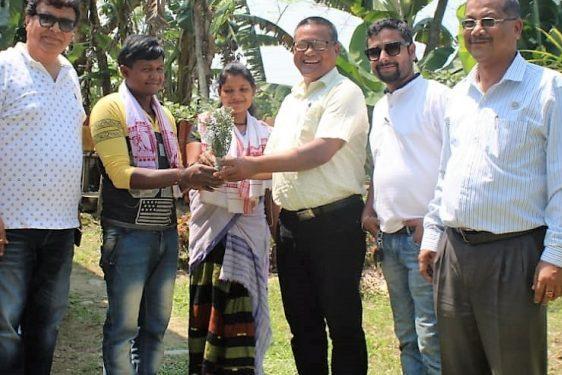 Dibrugarh's Harishpur tea garden shines in Swachhta mission