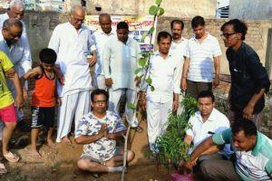 त्रिवेणी लगाकर पर्यावरण बचाने का संदेश
