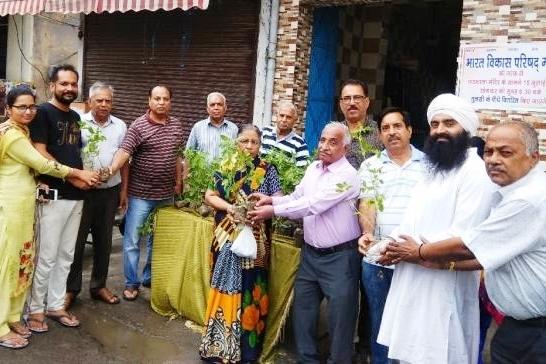 मोगा शाखा ने 300 तुलसी के पौधे वितरित किये